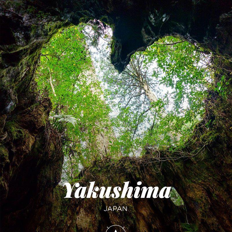 bucketlist-yakushima-japan